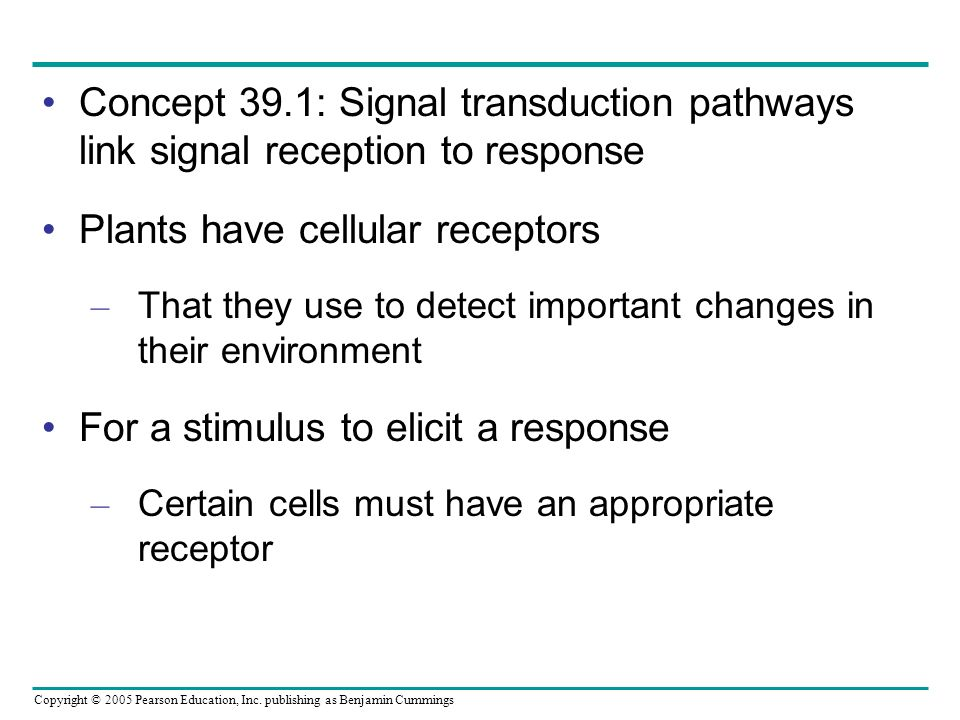 Copyright © 2005 Pearson Education, Inc. publishing as Benjamin Cummings Concept 39.1: Signal transduction pathways link signal reception to response