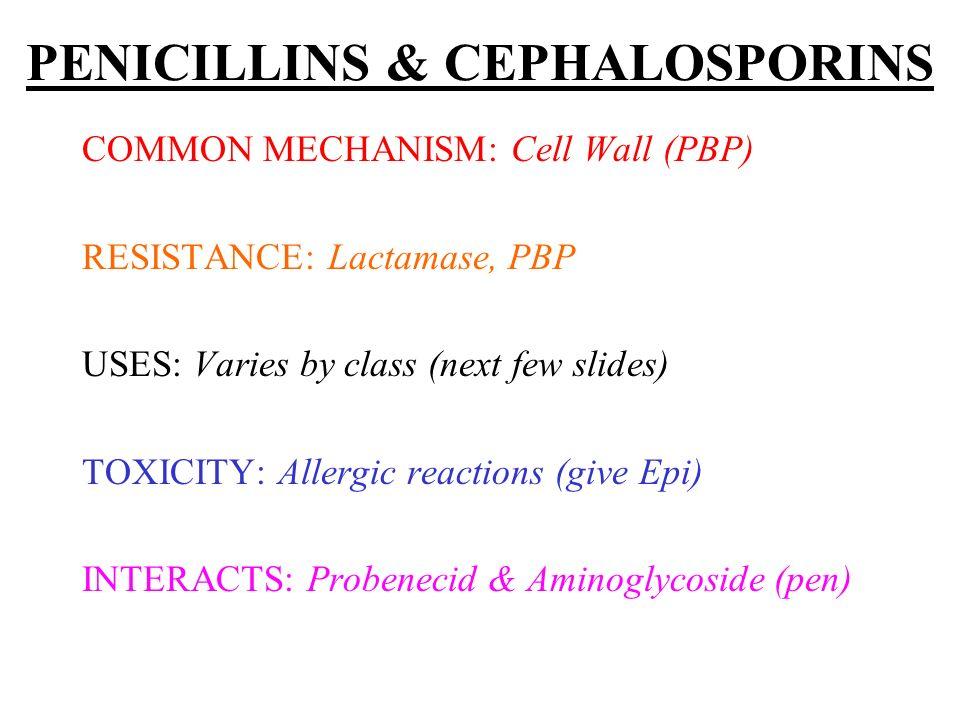 ANTIFUNGALS: Other FLUCYTOSINE: Cryptocox & Candida, CSF.