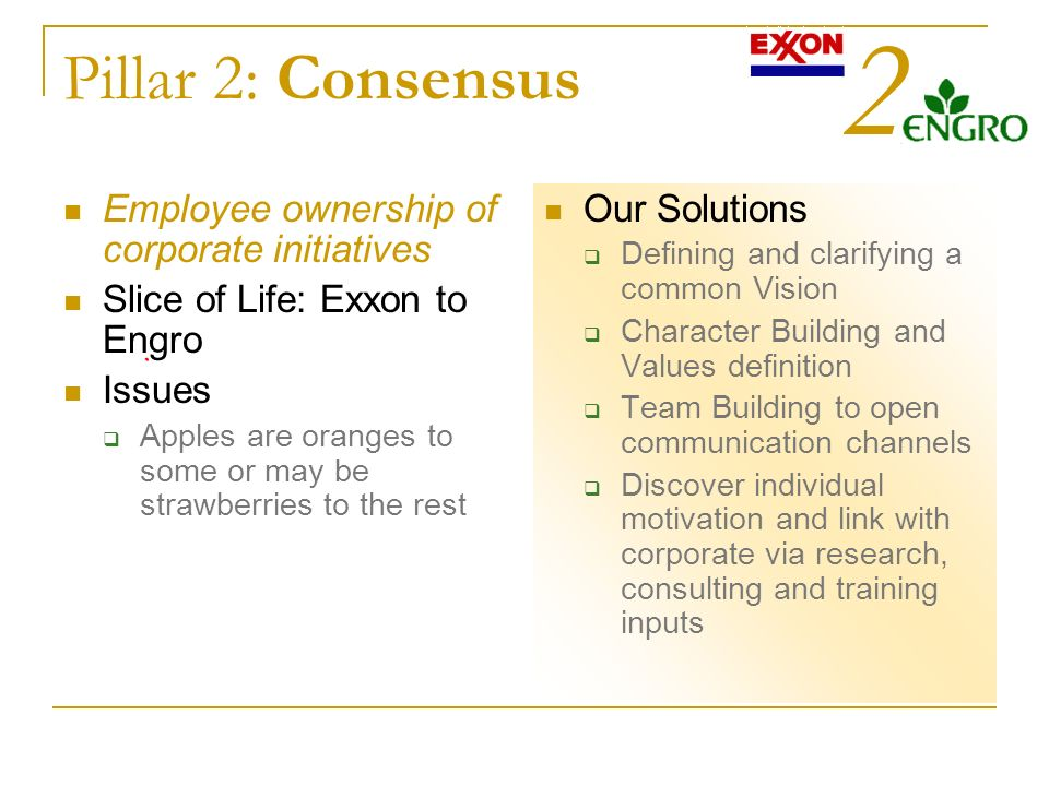 Pillar 2: Consensus Employee ownership of corporate initiatives Slice of Life: Exxon to Engro Issues Apples are oranges to some or may be strawberries to the rest Our Solutions Defining and clarifying a common Vision Character Building and Values definition Team Building to open communication channels Discover individual motivation and link with corporate via research, consulting and training inputs 2