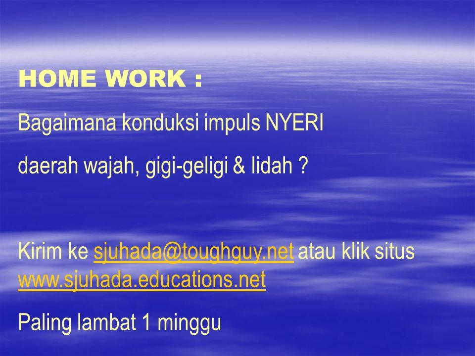 HOME WORK : Bagaimana konduksi impuls NYERI daerah wajah, gigi-geligi & lidah ? Kirim ke sjuhada@toughguy.net atau klik situs www.sjuhada.educations.n