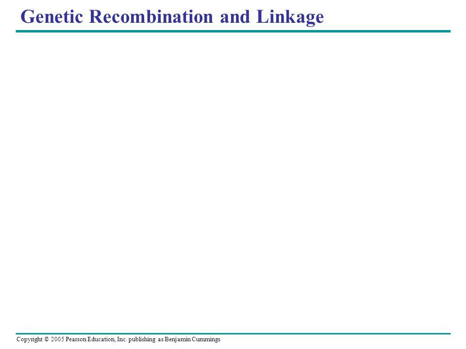 Copyright © 2005 Pearson Education, Inc. publishing as Benjamin Cummings Genetic Recombination and Linkage