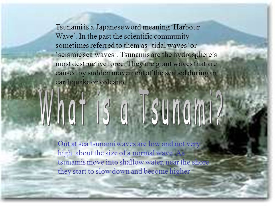 Tsunami is a Japanese word meaning Harbour Wave. In the past the scientific community sometimes referred to them as tidal waves or seismic sea waves.