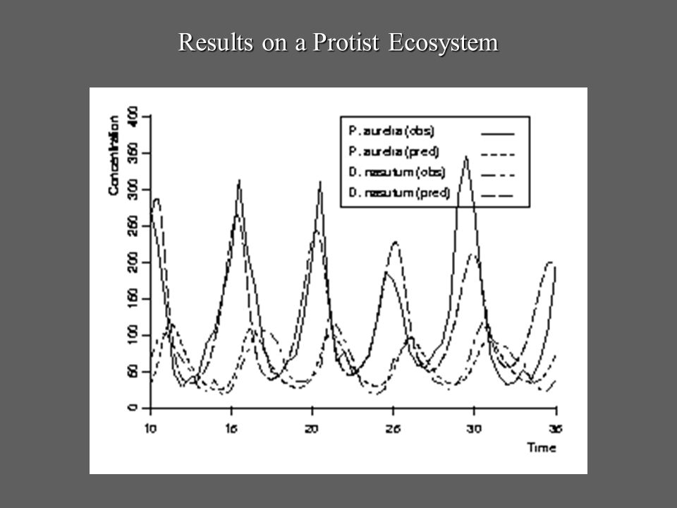Results on a Protist Ecosystem