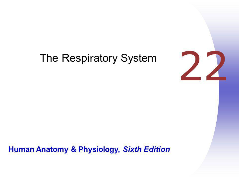Human Anatomy & Physiology, Sixth Edition 22 The Respiratory System