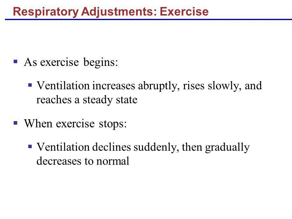As exercise begins: Ventilation increases abruptly, rises slowly, and reaches a steady state When exercise stops: Ventilation declines suddenly, then
