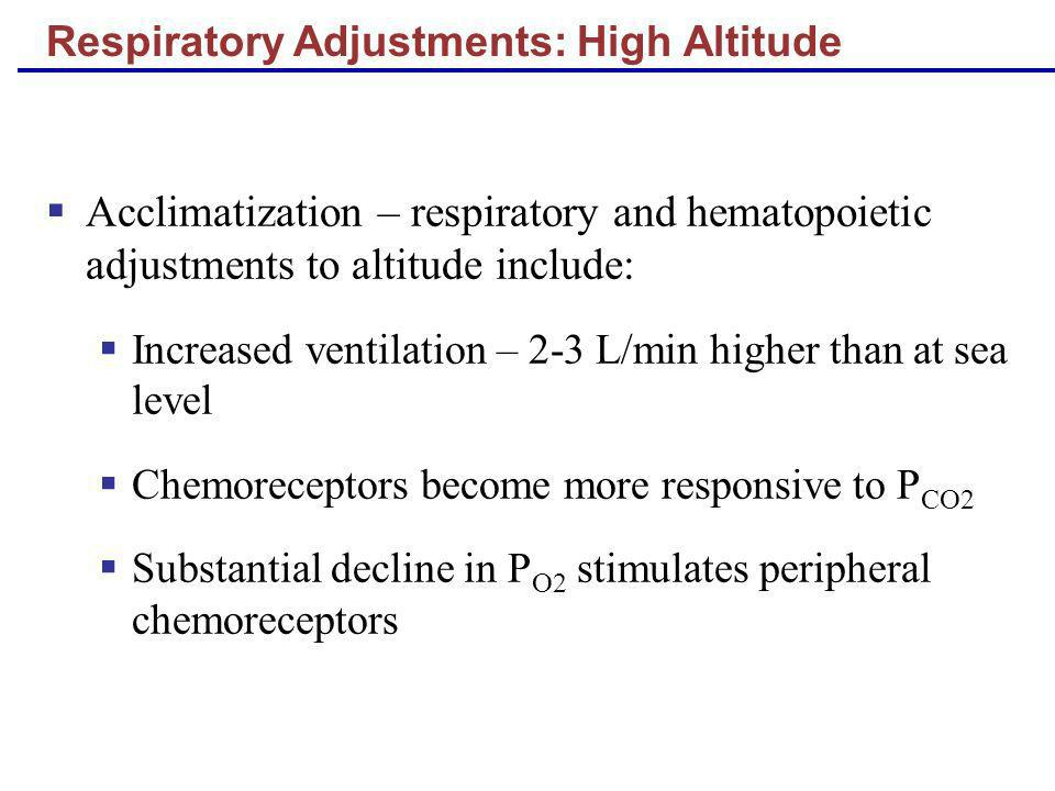 Acclimatization – respiratory and hematopoietic adjustments to altitude include: Increased ventilation – 2-3 L/min higher than at sea level Chemorecep