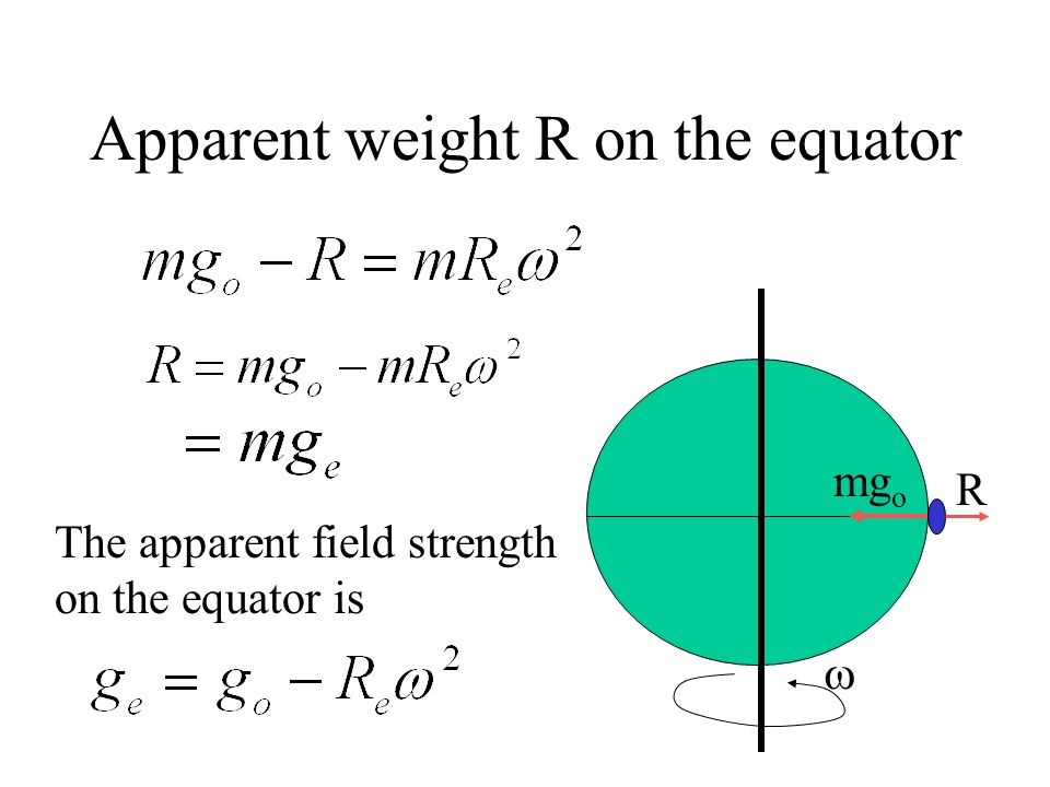 Apparent Weight R 3. The earth is rotating. The apparent weight R is not equal to the gravitational force mg o in magnitude. X r m O Y FcFc R mg o