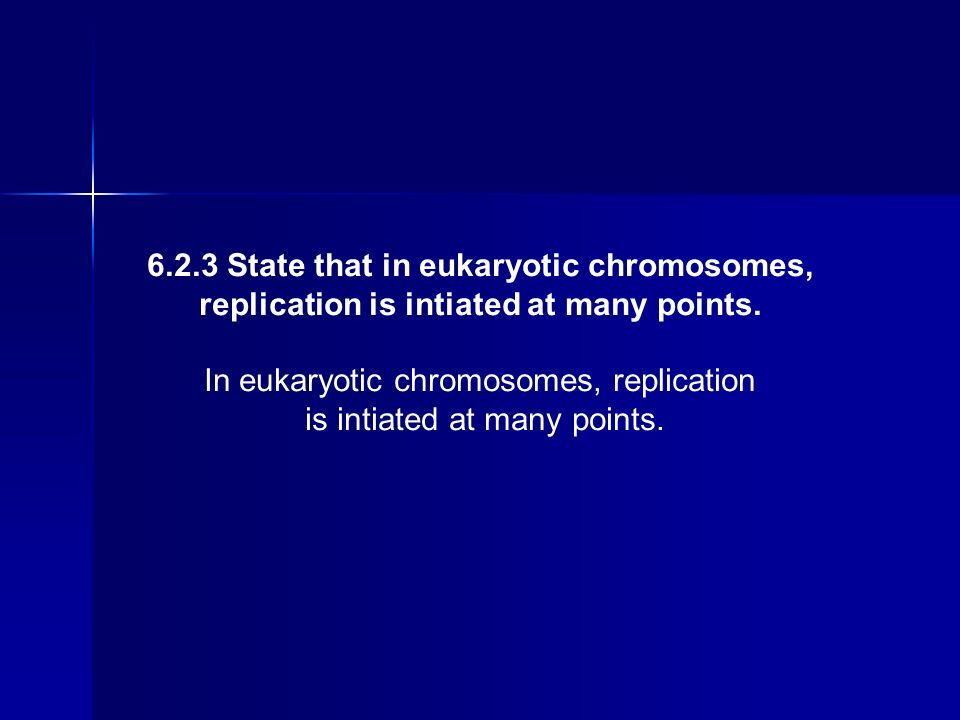6.2.3 State that in eukaryotic chromosomes, replication is intiated at many points. In eukaryotic chromosomes, replication is intiated at many points.
