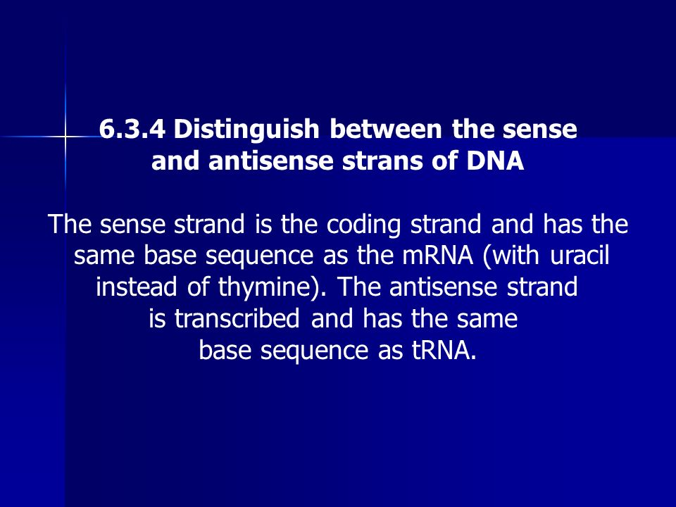 6.3.4 Distinguish between the sense and antisense strans of DNA The sense strand is the coding strand and has the same base sequence as the mRNA (with
