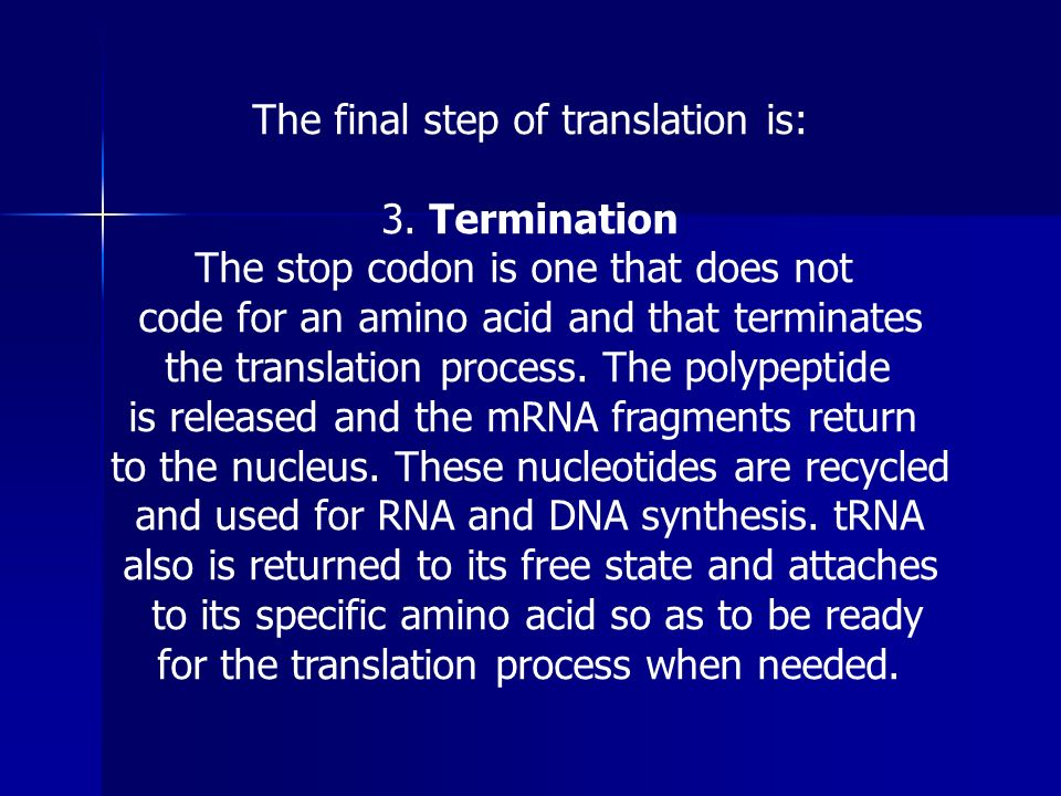 The final step of translation is: 3. Termination The stop codon is one that does not code for an amino acid and that terminates the translation proces