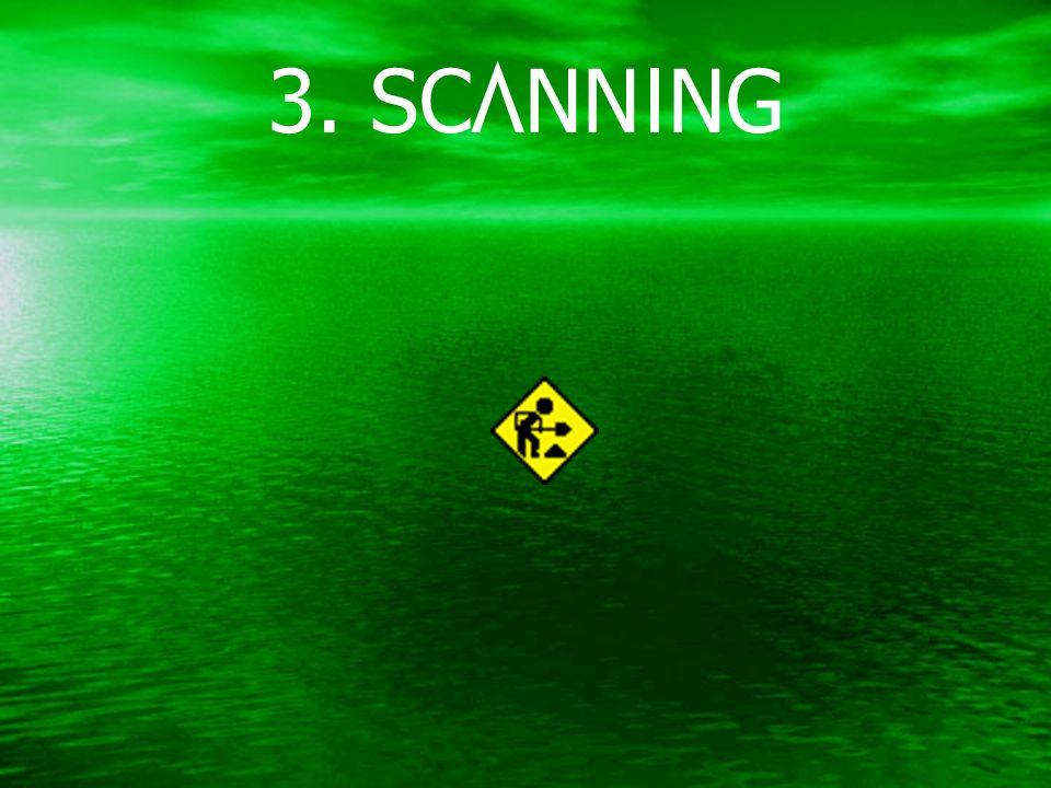 3. SCANNING