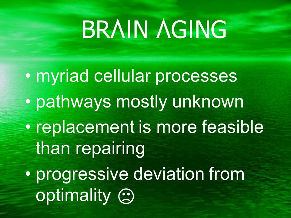 BRAIN AGING myriad cellular processes pathways mostly unknown replacement is more feasible than repairing progressive deviation from optimality