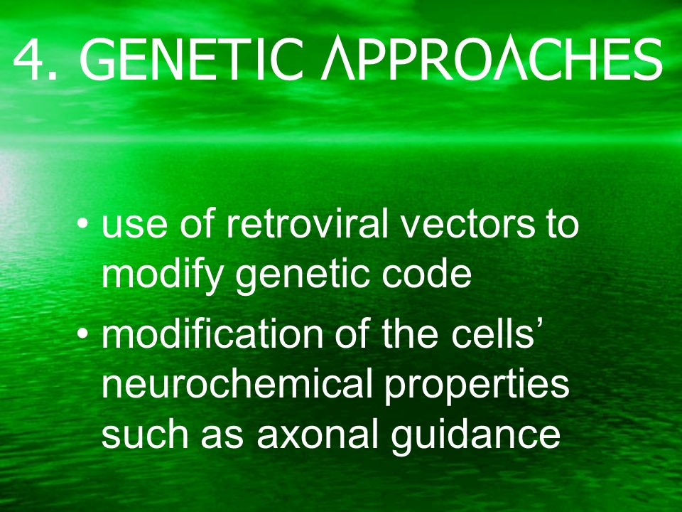 4. GENETIC APPROACHES use of retroviral vectors to modify genetic code modification of the cells neurochemical properties such as axonal guidance
