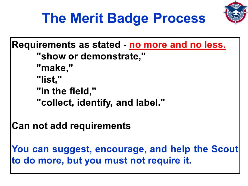 The Merit Badge Process Requirements as stated - no more and no less.