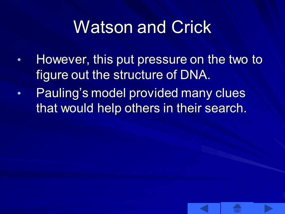 Watson and Crick In December of 1952, it was suggested that Pauling had come up with the structure of DNA. Watson and Crick immediately knew this wasn
