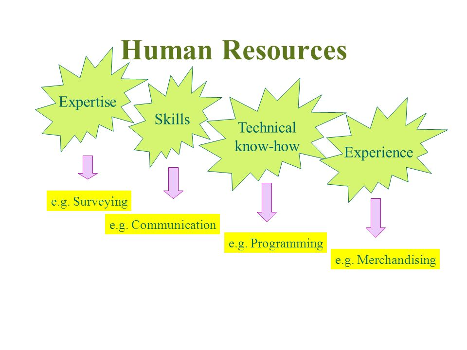 Definition of Human Resources