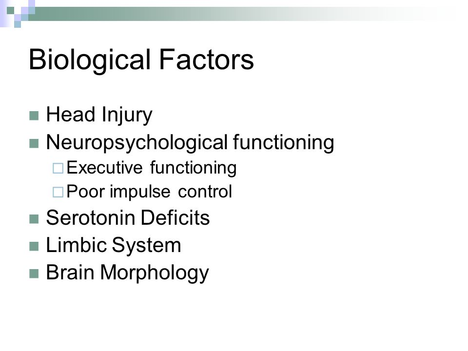 Biological Factors Head Injury Neuropsychological functioning Executive functioning Poor impulse control Serotonin Deficits Limbic System Brain Morphology