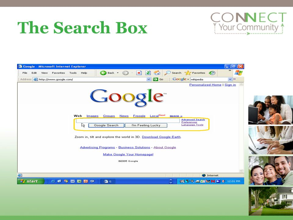 The Search Box