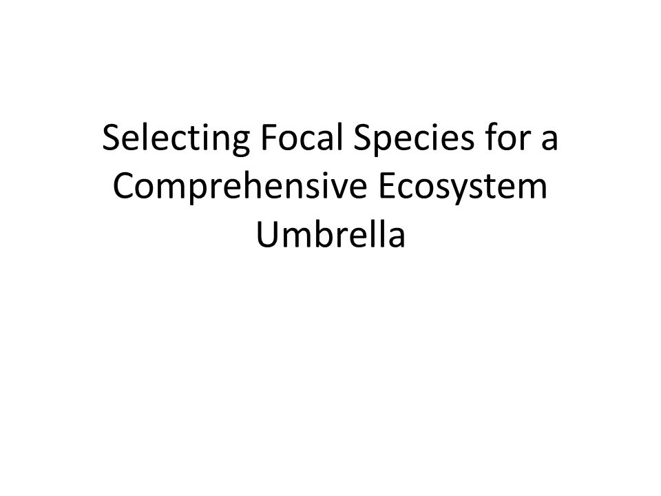 Selecting Focal Species for a Comprehensive Ecosystem Umbrella