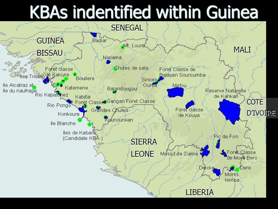KBAs indentified within Guinea SENEGAL SIERRALEONE LIBERIA MALI COTEDIVOIRE GUINEABISSAU
