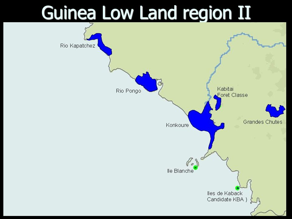 Guinea Low Land region II