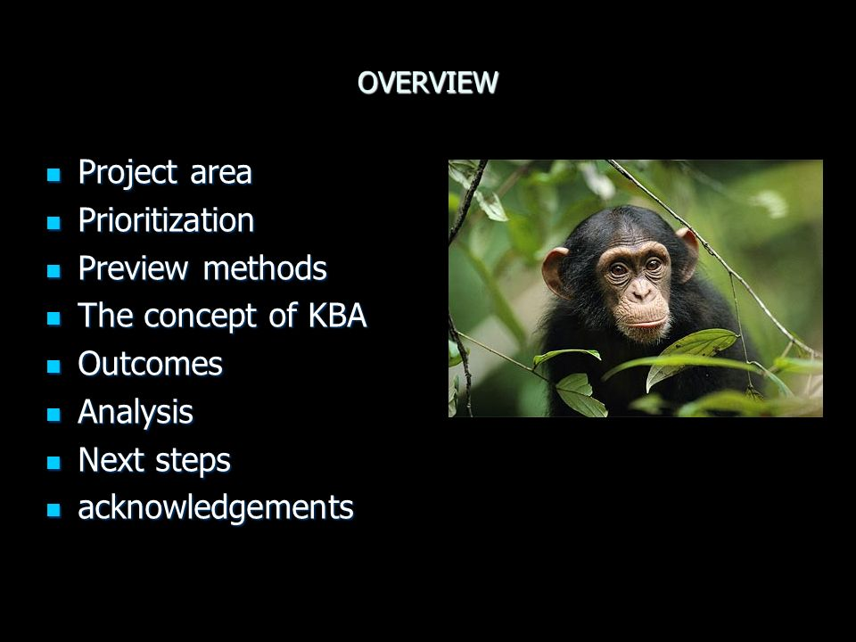 OVERVIEW Project area Project area Prioritization Prioritization Preview methods Preview methods The concept of KBA The concept of KBA Outcomes Outcomes Analysis Analysis Next steps Next steps acknowledgements acknowledgements