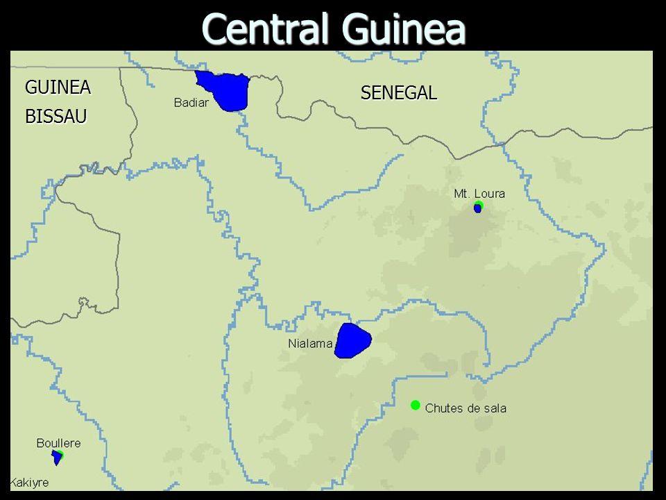 Central Guinea SENEGAL GUINEABISSAU