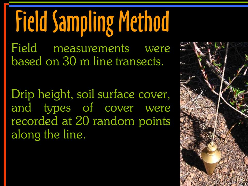 No 20 Field measurements were based on 30 m line transects. Drip height, soil surface cover, and types of cover were recorded at 20 random points alon