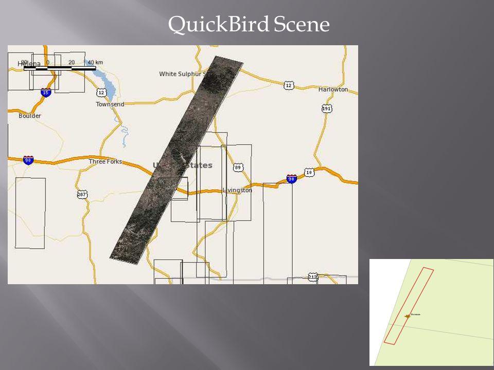 QuickBird Scene