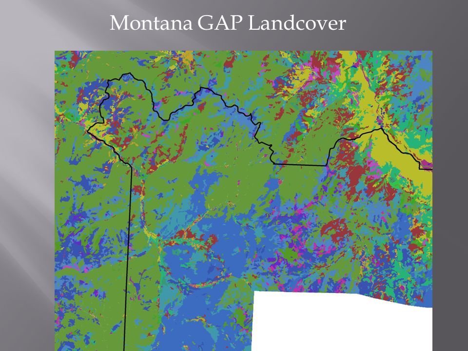 Montana GAP Landcover