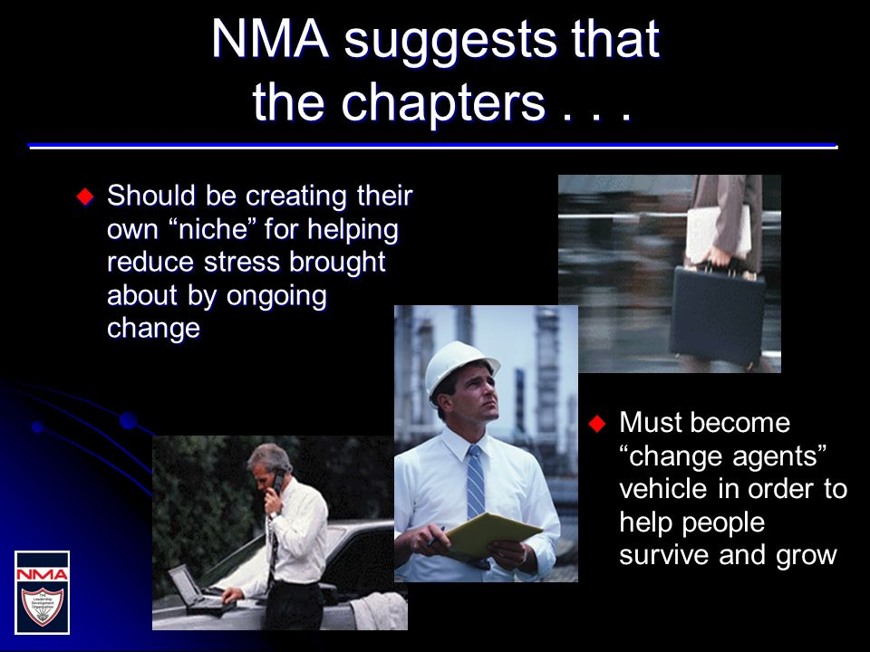 NMA suggests that the chapters...