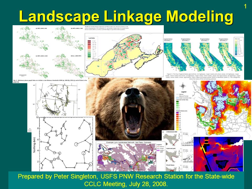 Landscape Linkage Modeling Prepared by Peter Singleton, USFS PNW Research Station for the State-wide CCLC Meeting, July 28, 2008. 1