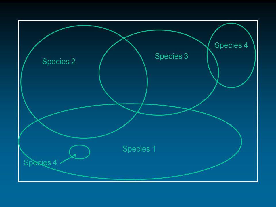 Species 2 Species 1 Species 3 Species 4