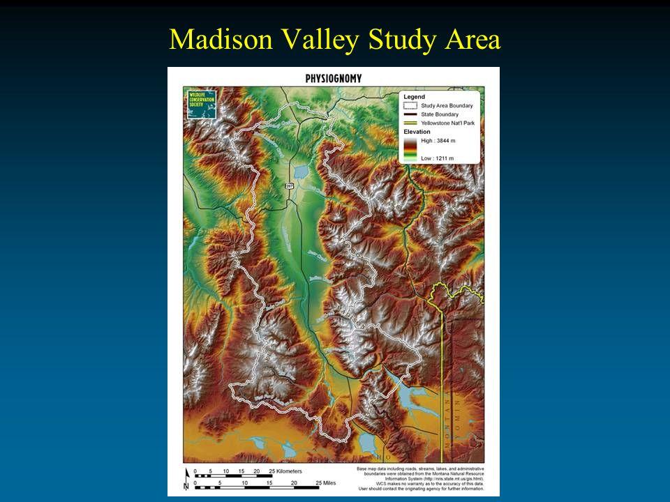 Madison Valley Study Area