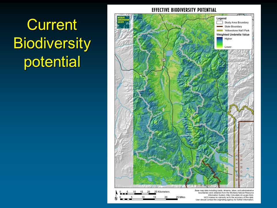 Current Biodiversity potential