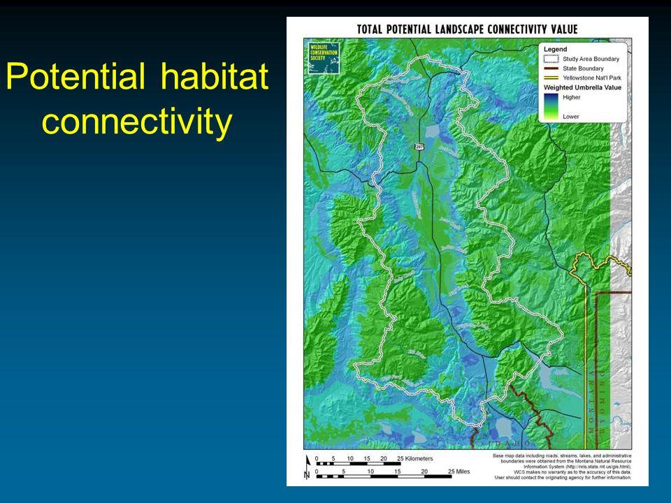 Potential habitat connectivity