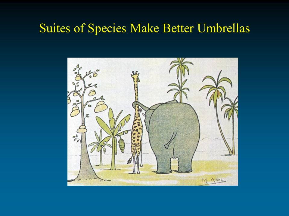 Suites of Species Make Better Umbrellas