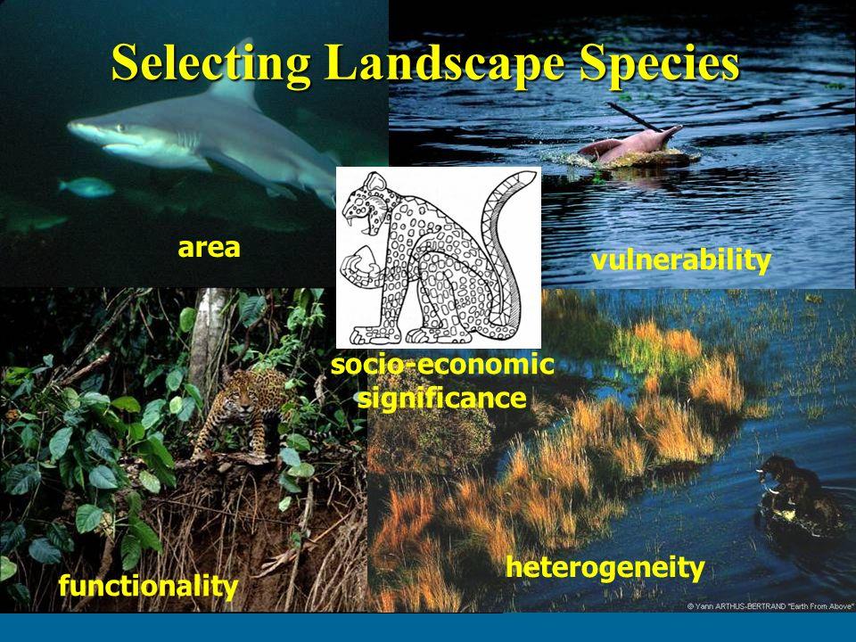 5 criteria for selecting landscape species area vulnerability functionality heterogeneity socio-economic significance Selecting Landscape Species