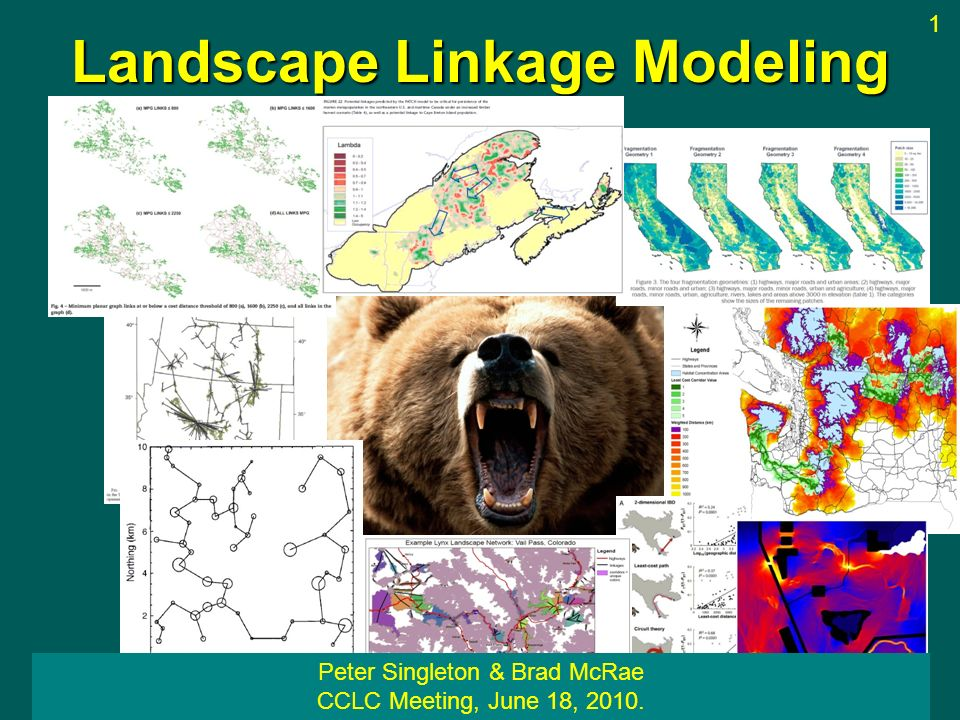 A more realistic landscape Circuit theory: Least-cost path: High Low Slide by Brad McRae 30