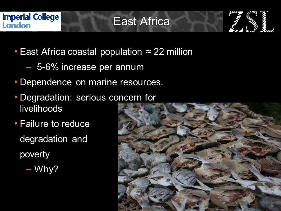 East Africa East Africa coastal population 22 million – 5-6% increase per annum Dependence on marine resources. Degradation: serious concern for livel