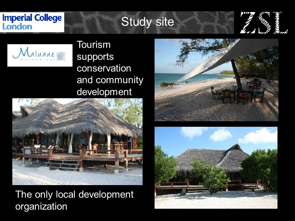 Study site Tourism supports conservation and community development The only local development organization