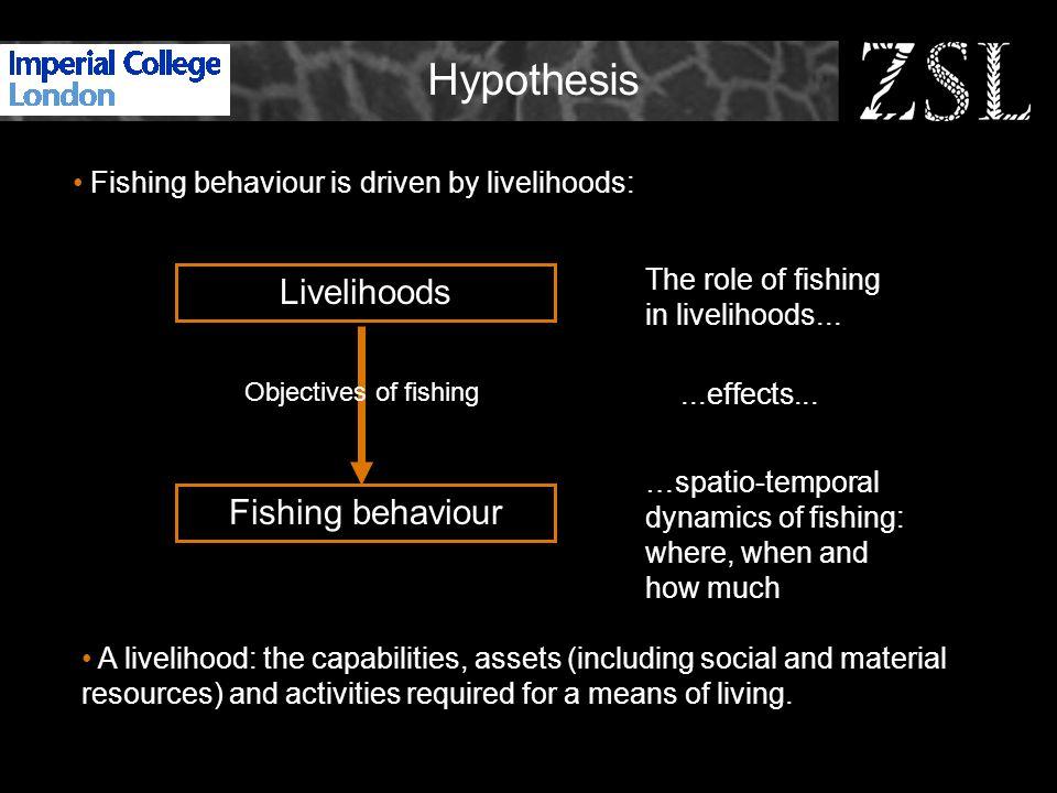 Livelihoods Potential roles of fishing in livelihoods: