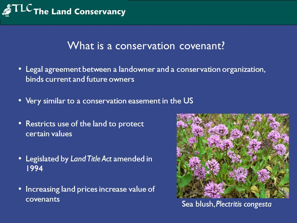 Sea blush, Plectritis congesta What is a conservation covenant? Legal agreement between a landowner and a conservation organization, binds current and