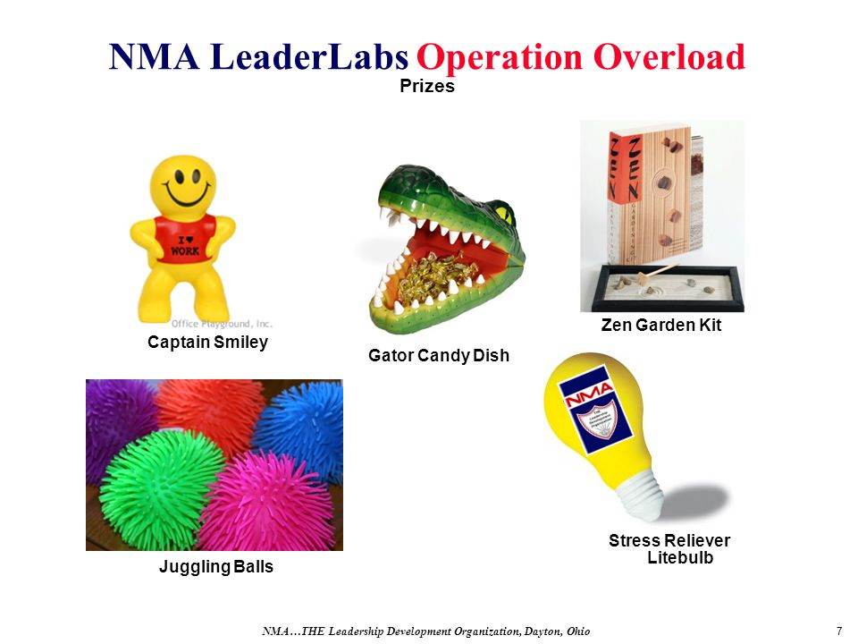 7 NMA LeaderLabs Operation Overload Prizes NMA…THE Leadership Development Organization, Dayton, Ohio Zen Garden Kit Stress Reliever Litebulb Gator Candy Dish Captain Smiley Juggling Balls