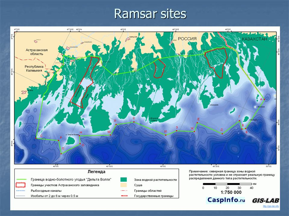 Ramsar sites