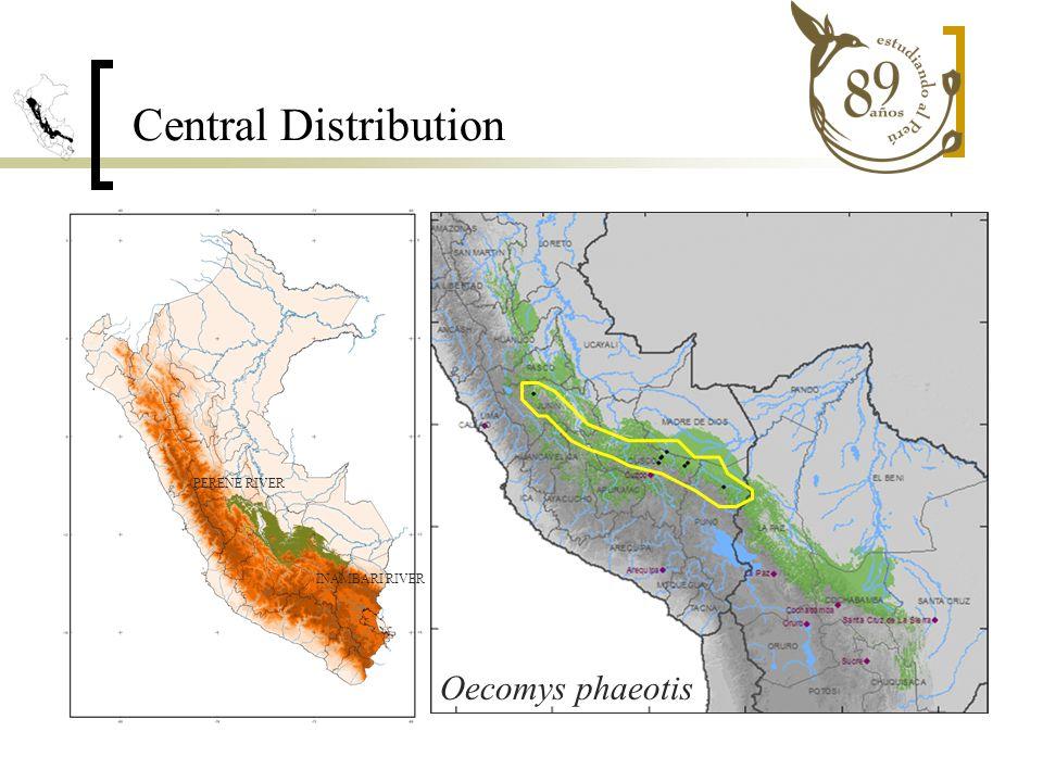 PERENE RIVER INAMBARI RIVER Oecomys phaeotis Central Distribution