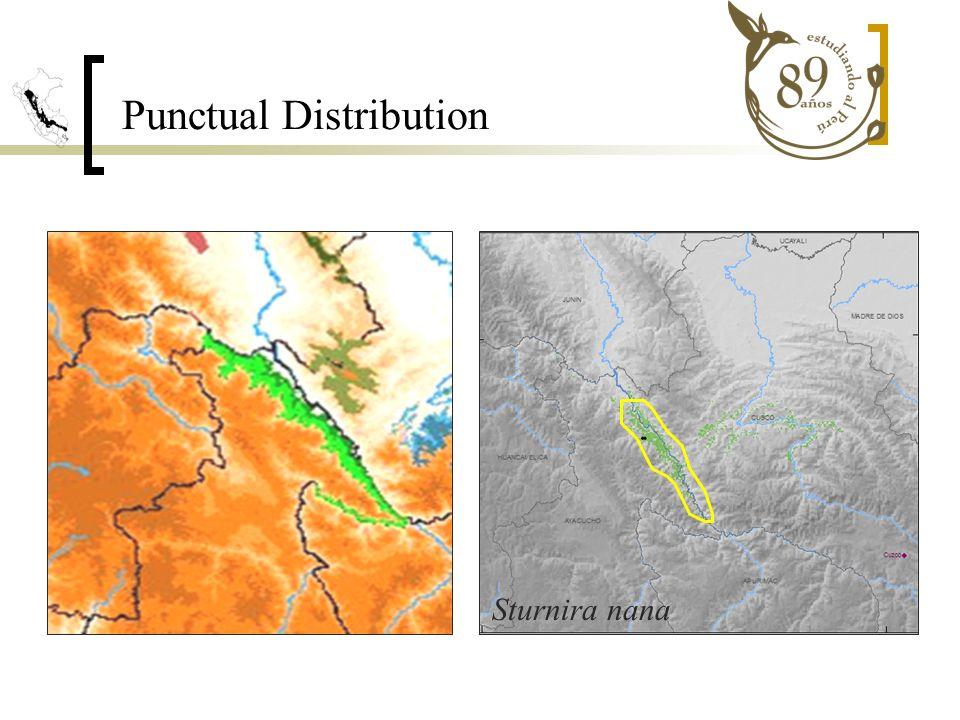 Sturnira nana Punctual Distribution