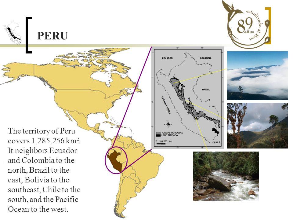 PRIORITY AREAS Deductive Model Yungas Centrales de Bolivia Inductive model Norwest of Huánuco Above Inambari River Cordillera occidental de Vilcabamba Cordillera de Paucartambo