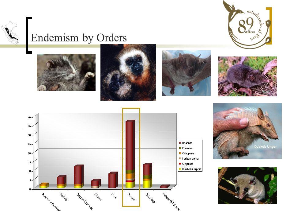 Endemism by Orders