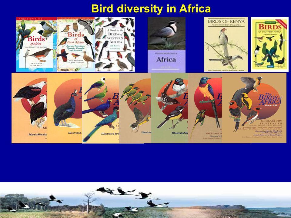 Bird diversity in Africa